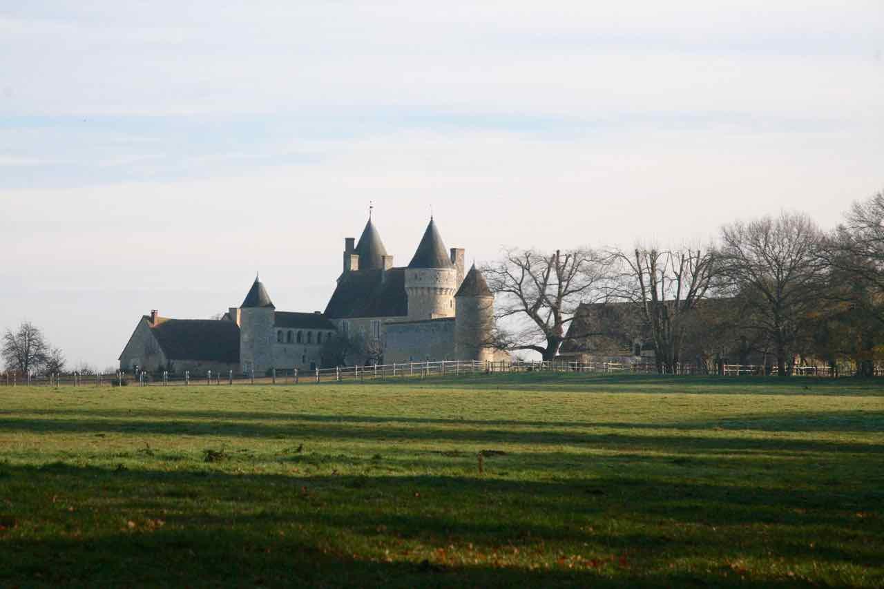 Château de l'Angenardière