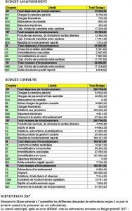 compte rendu conseil municipal mars 2017-3